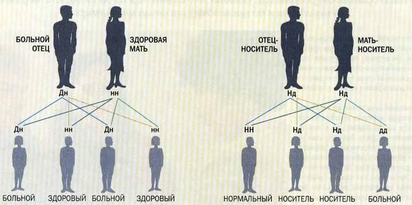 наследственность болезни