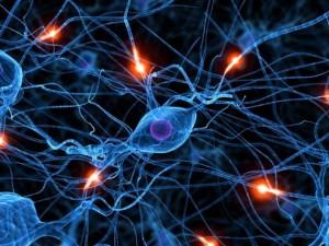 Нервная система и псориаз