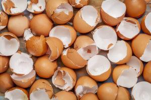 Яичная скорлупа лечит от дерматита