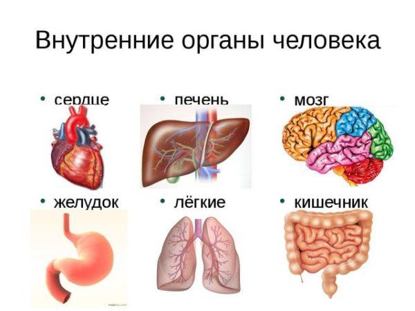Дерматит герпетический: симптомы и лечение