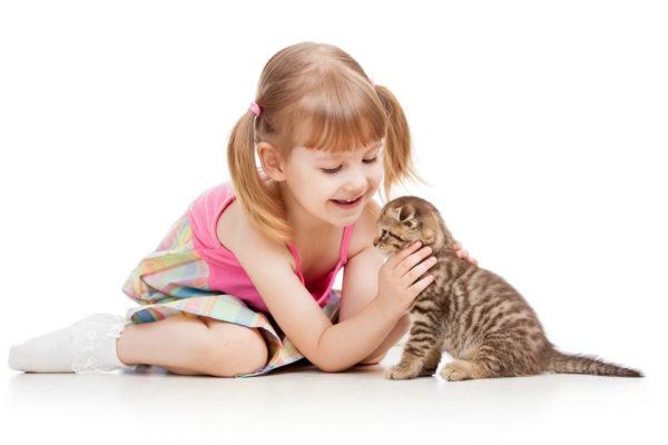 полосатый котёнок и девочка