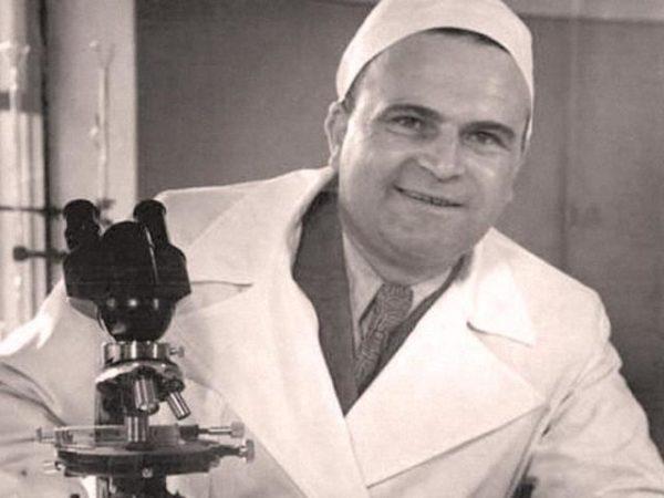профессор дорогов