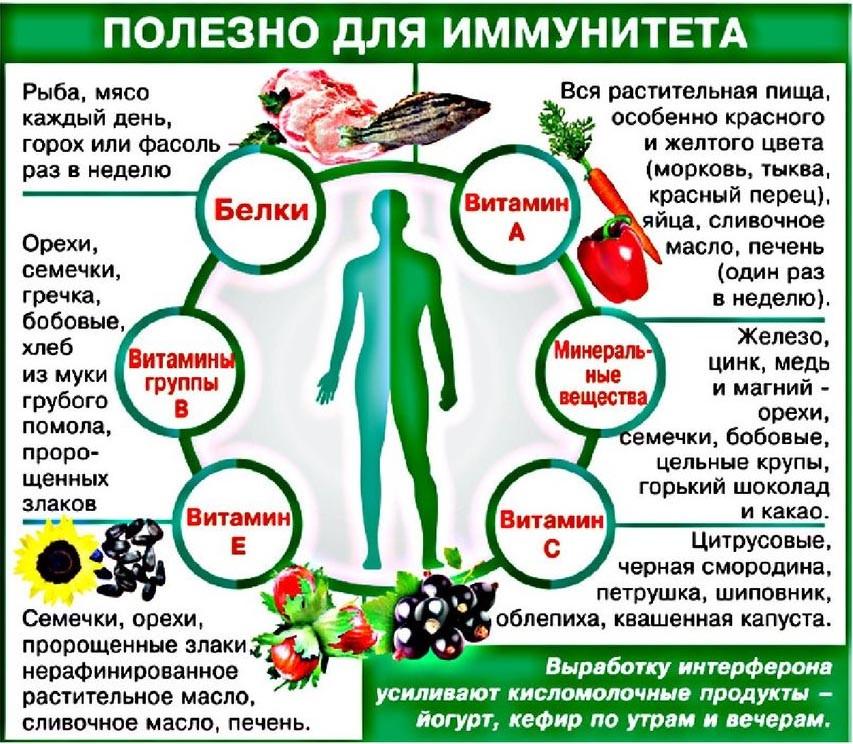 полезно для иммунитета